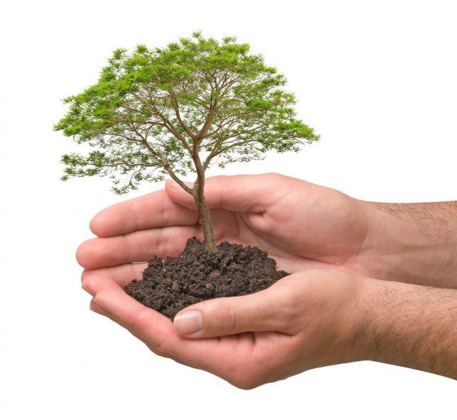 Sonderabfall - Umweltschutz
